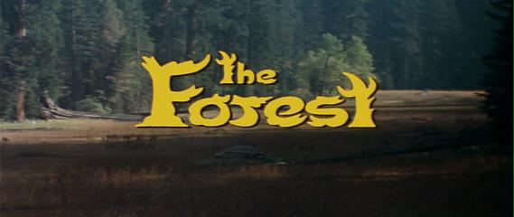 The Forest   the forest title reviews horror