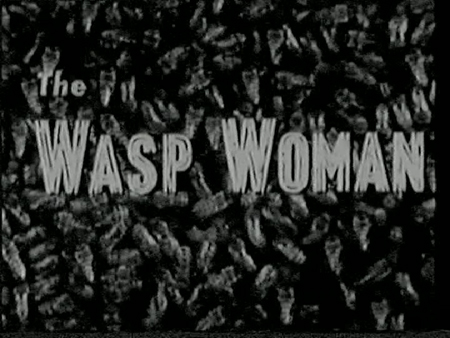 The Wasp Woman   wasp title reviews horror