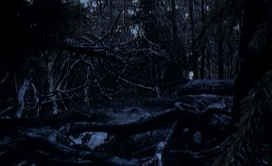 The Unknown   unknown woods02 300x183 sci fi reviews horror