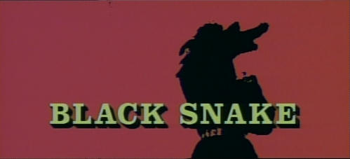Black Snake   Black Snake title 499x227 action