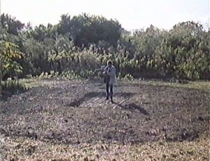 Miami Golem   Miami Golem crop circle 300x229 sci fi reviews horror action