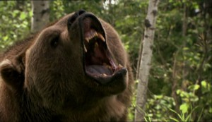 Grizzly Rage   Grizzly Rage bear roar 300x173 reviews horror
