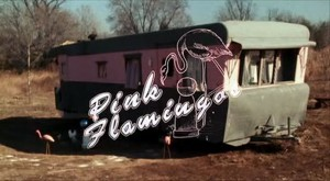 Pink Flamingos   PF title screen CR 300x165 reviews comedy