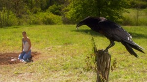 Conjurer   Conjurer crow on pole 300x167 thriller reviews reviews horror drama