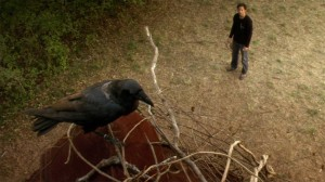 Conjurer   Conjurer crow on roof 300x168 thriller reviews reviews horror drama