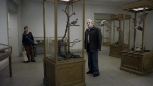 A Pigeon Sat On A Branch Reflecting On Existence   A Pigeon still 01 300x168 reviews drama comedy