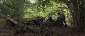 The Creeping Garden   The Creeping Garden in the woods 300x127 reviews documentary
